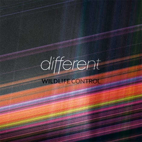 different wildlifecontrol New Music From Wildlife Control