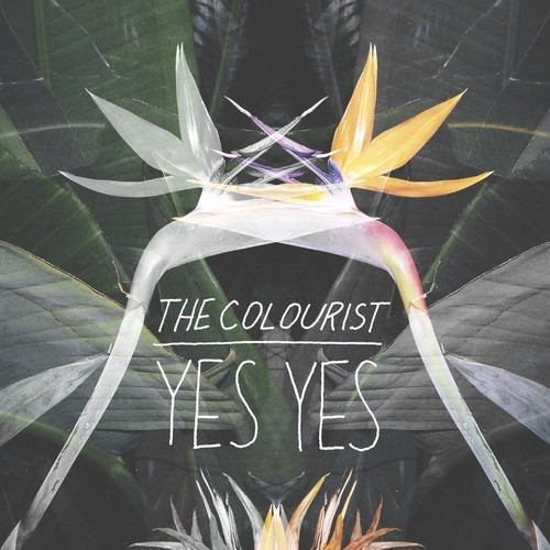 thecolourist yesyes Yes Yes