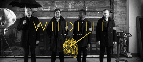wildlife1 Born To Ruin
