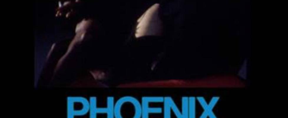 phoenix role model video