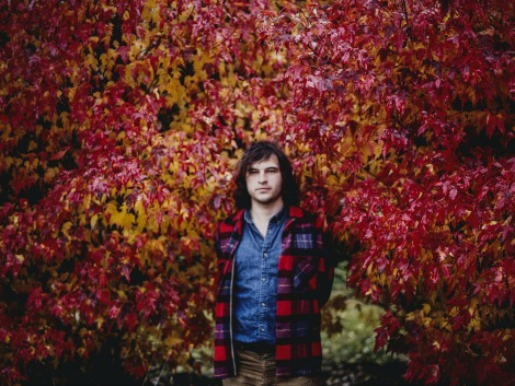 """Primrose Green"" by Ryley Walker"