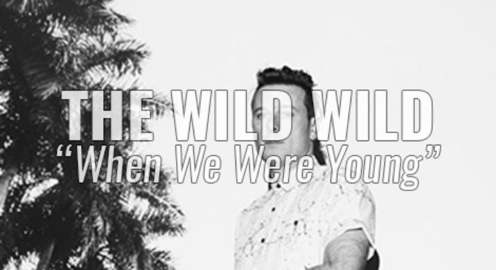 the wild wild
