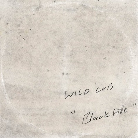"""Blacktide"" by Wild Cub"