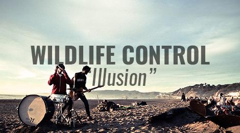 wildlife control